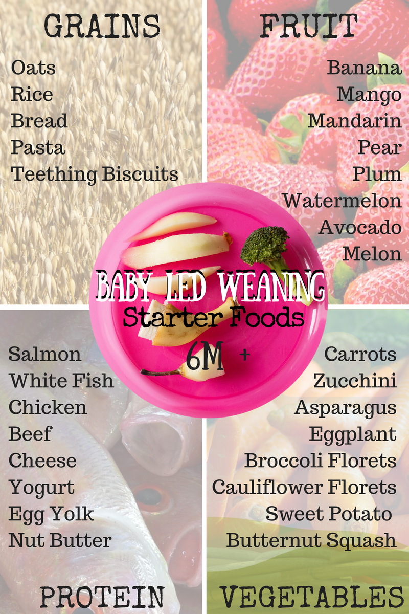 حقيقة في حاجة إلى مكتبة الجذع Baby Led Weaning Starter Foods Gallatinbreastfeedingcoalition Org A cantaloupe has a rough grey skin on the outside, but reveals tender juicy flesh in the middle. حقيقة في حاجة إلى مكتبة الجذع baby led weaning starter foods gallatinbreastfeedingcoalition org